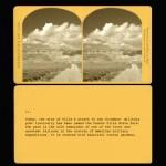 CARDS 11 copy