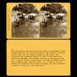CARDS8 copy