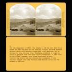 CARDS9 copy